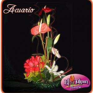 Floreria El Tulipan Flores Ambato Floreria Ambato